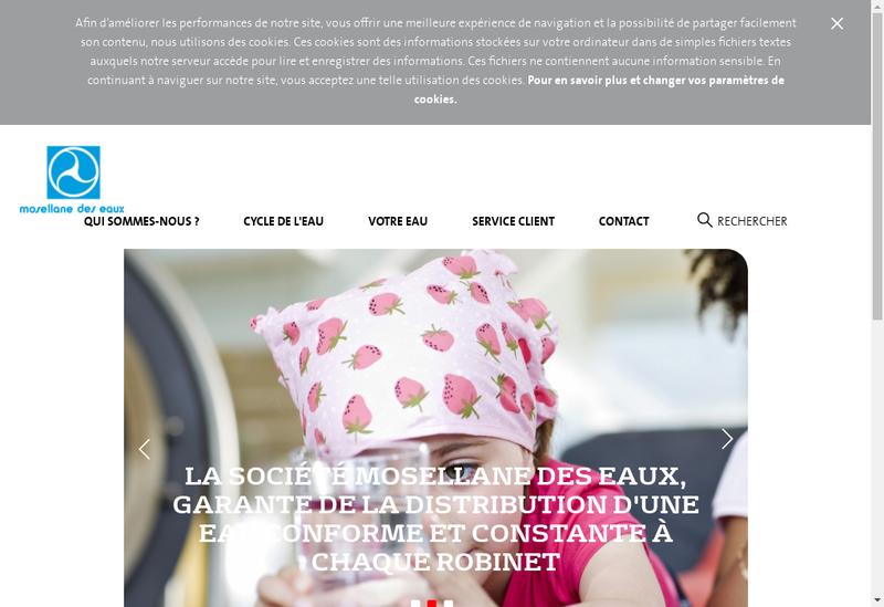 Capture d'écran du site de Societe Mosellane des Eaux