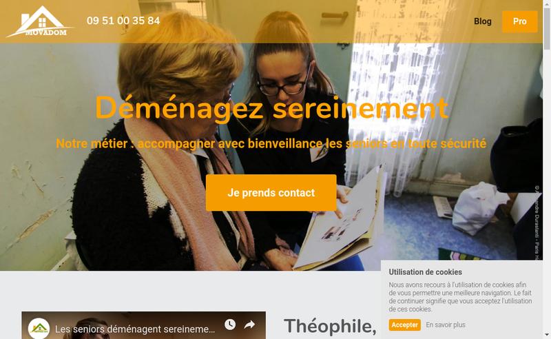 Capture d'écran du site de Movadom