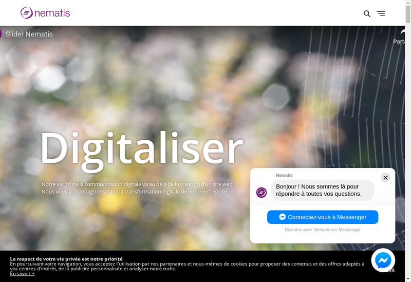 Capture d'écran du site de Nematis