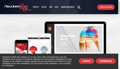 Capture d'écran du site de Newquest Group