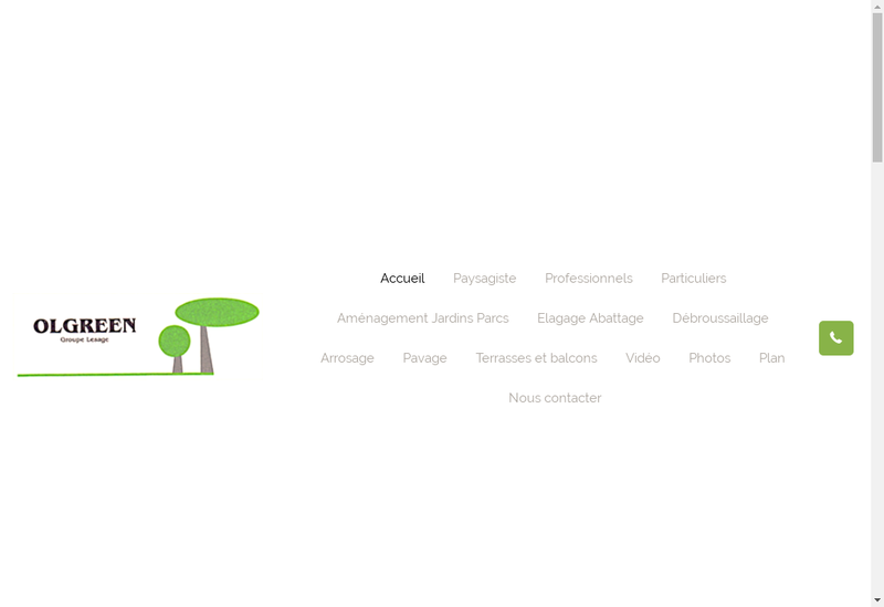 Capture d'écran du site de Ol Green