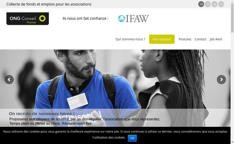 Capture d'écran du site de Ong Conseil Groupe