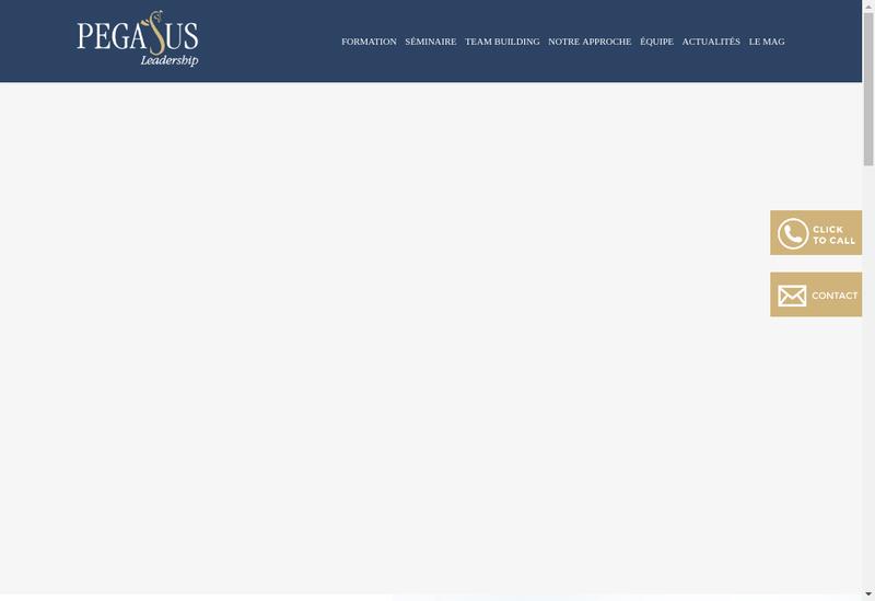 Capture d'écran du site de Pegasus Leadership