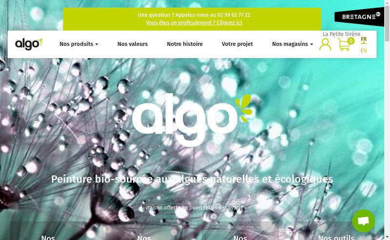 Capture d'écran du site de Algo Paint