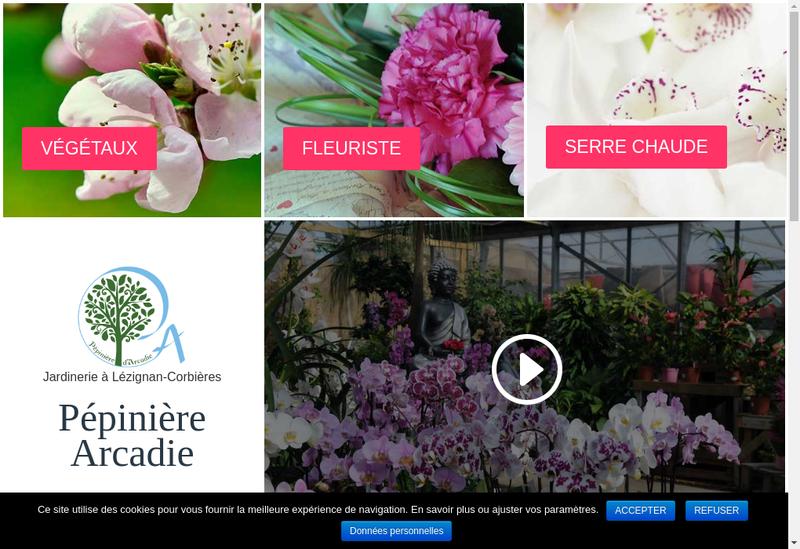 Capture d'écran du site de Pepiniere d'Arcadie
