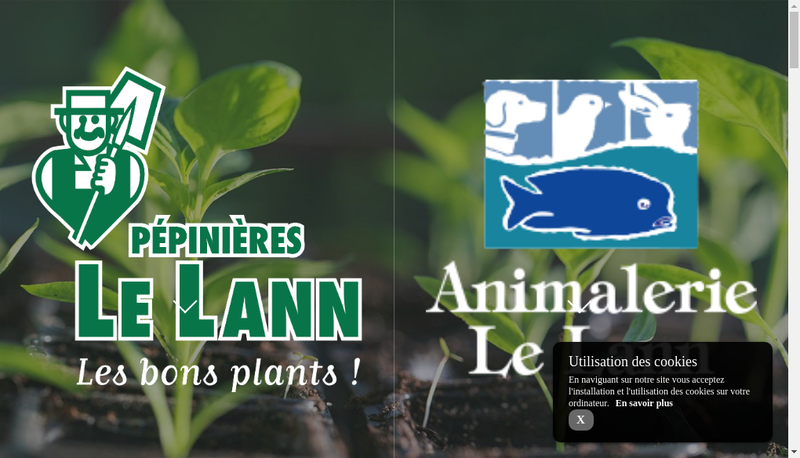 Capture d'écran du site de Le Lann