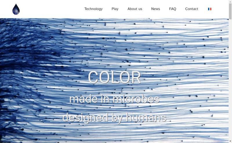 Capture d'écran du site de PILI