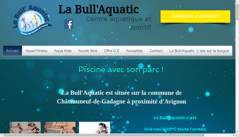 Capture d'écran du site de La Bull Aquatic