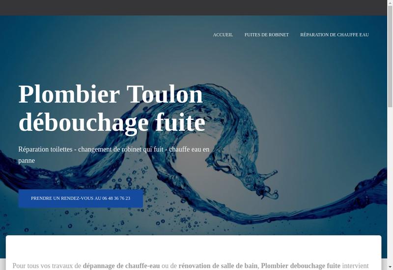 Capture d'écran du site de Entreprise Quentin