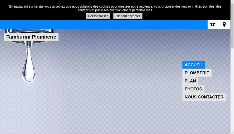 Capture d'écran du site de Tamburini