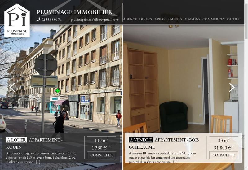 Capture d'écran du site de Pluvinage Immobilier