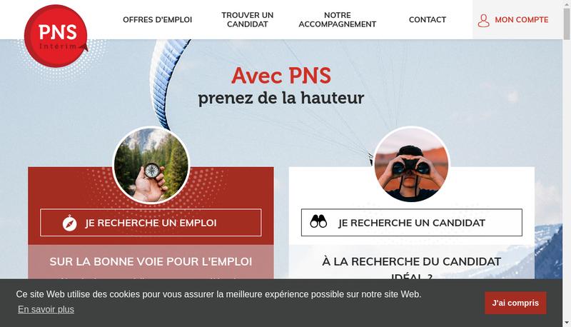 Capture d'écran du site de Pns Interim Colmar