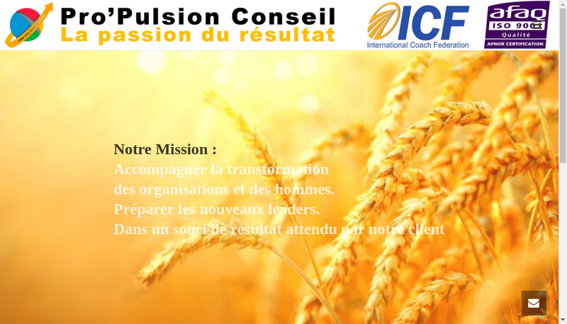 Capture d'écran du site de Pro Pulsion Conseil