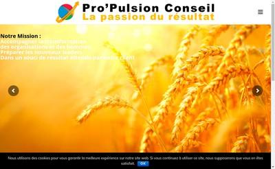 Site internet de Pro'Pulsion Conseil