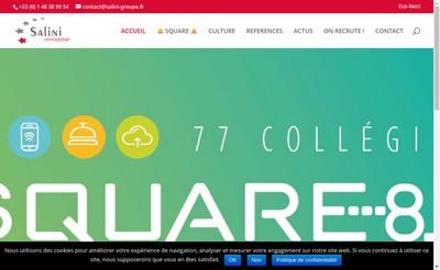Site internet de Salini Immobilier