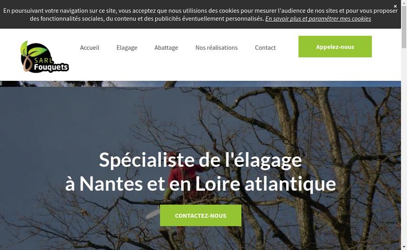 Capture d'écran du site de Fouquets