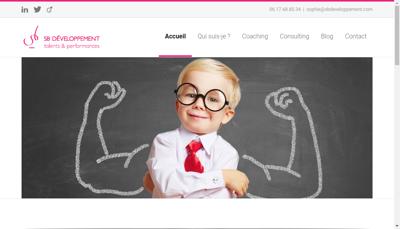 Capture d'écran du site de Sb Developpement