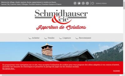 Site internet de Schmidhauser