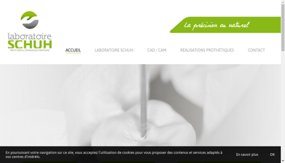 Capture d'écran du site de Laboratoire Schuh
