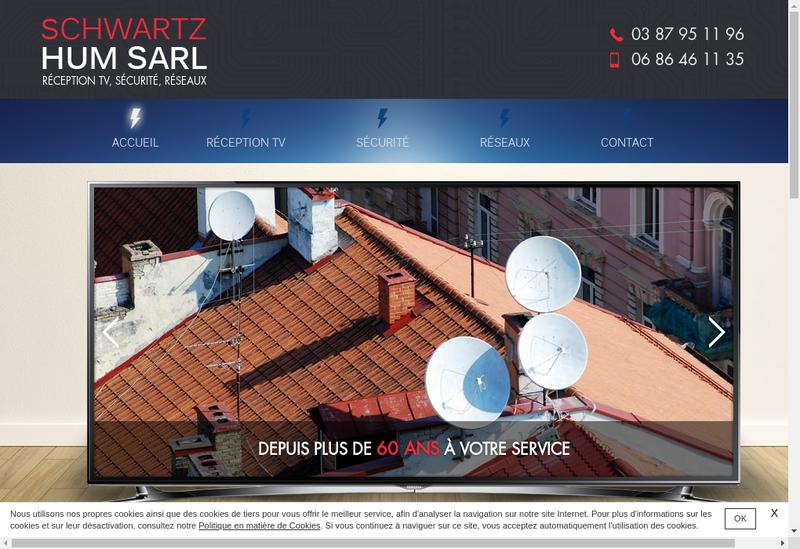 Capture d'écran du site de Schwartz Hum Antenne Service
