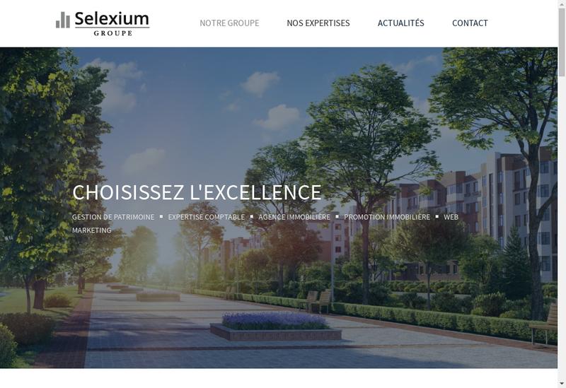 Capture d'écran du site de Selexium Groupe