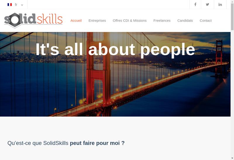 Capture d'écran du site de Solidskills France