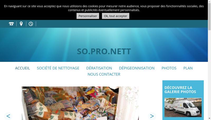 Capture d'écran du site de So Pro Nett