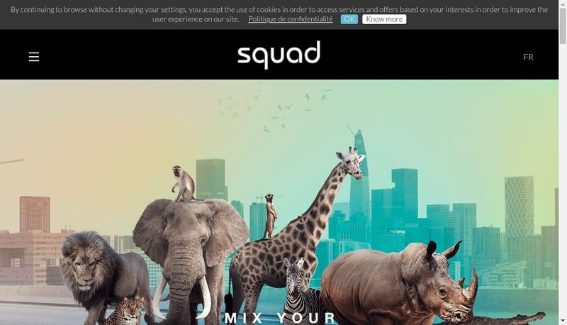 Capture d'écran du site de Squad