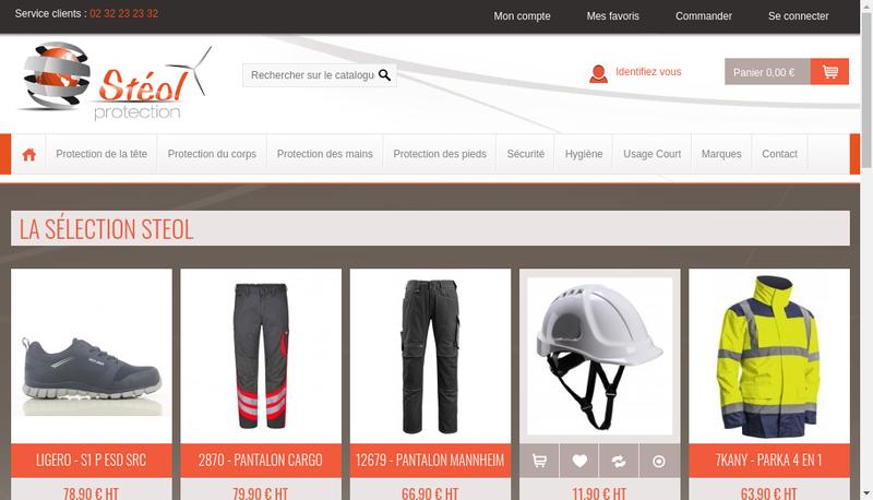 Capture d'écran du site de Steol