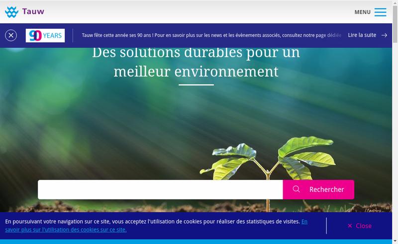 Capture d'écran du site de Tauw France