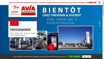 Site internet de TD-Distribution Thevenin-Ducrot-Distribution
