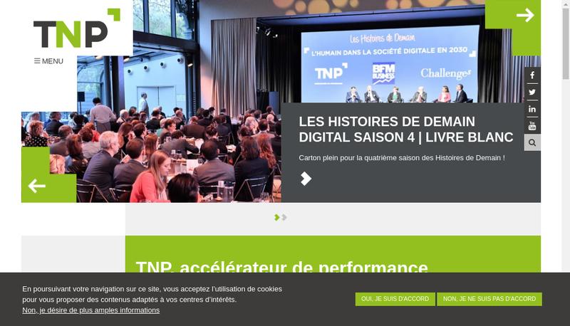 Capture d'écran du site de Tnp Consultants