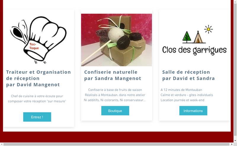 Capture d'écran du site de Toc-Toque