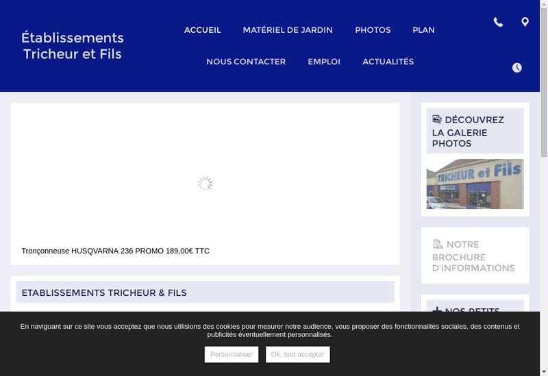 Capture d'écran du site de Etablissements à Tricheur et Fils