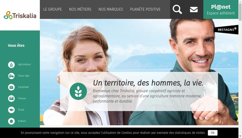 Capture d'écran du site de Distrivert