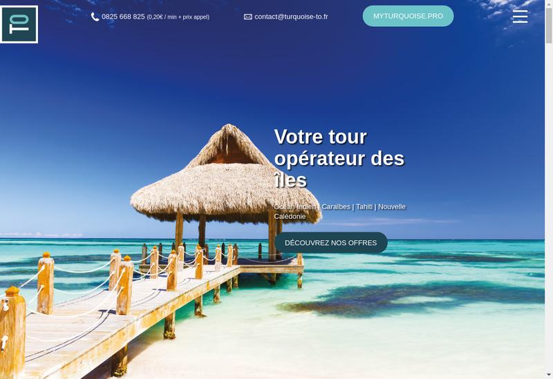 Capture d'écran du site de Vivez les Iles