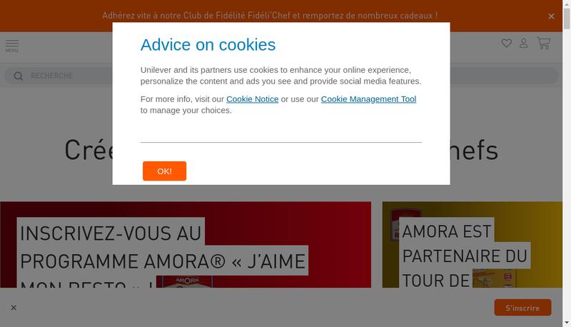 Capture d'écran du site de Food Solutions