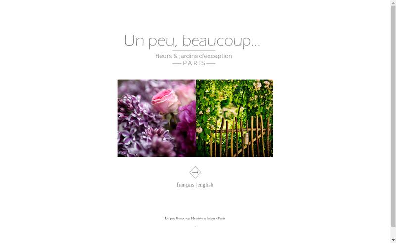 Capture d'écran du site de Un Peu Beaucoup