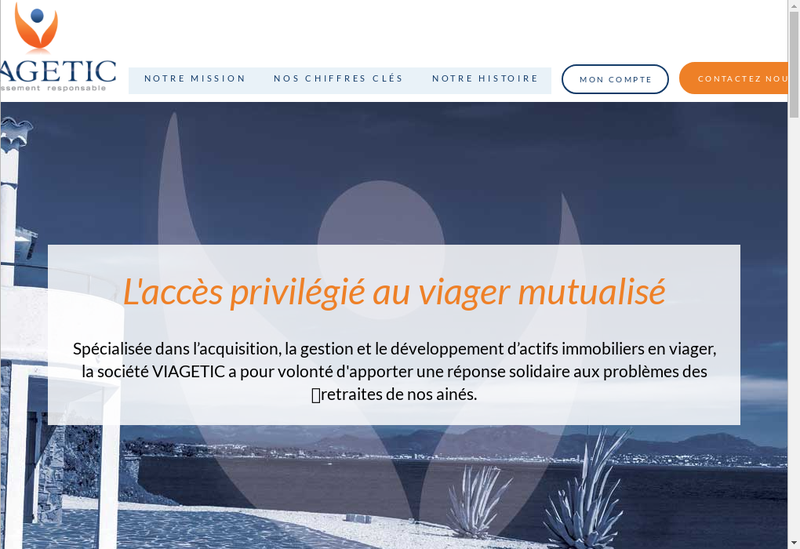 Capture d'écran du site de Viagetic Management