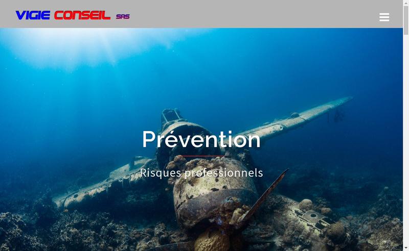 Capture d'écran du site de Vigie Conseil