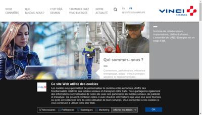 Capture d'écran du site de Cegelec Toulouse