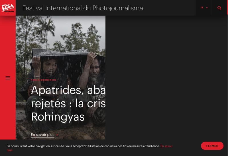 Capture d'écran du site de Artslide