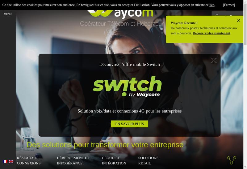 Capture d'écran du site de Waycom International