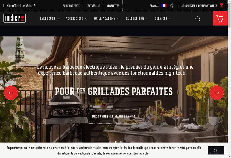 Capture d'écran du site de Weber Stephen France SARL