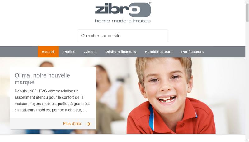 Capture d'écran du site de Pvg France
