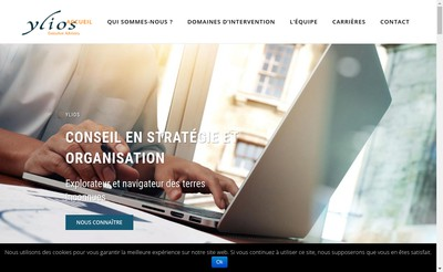 Site internet de It Group & Ylios