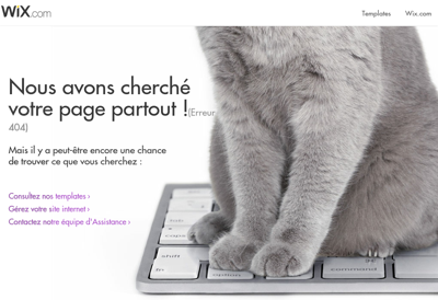 Capture d'écran du site de Amg Expertise