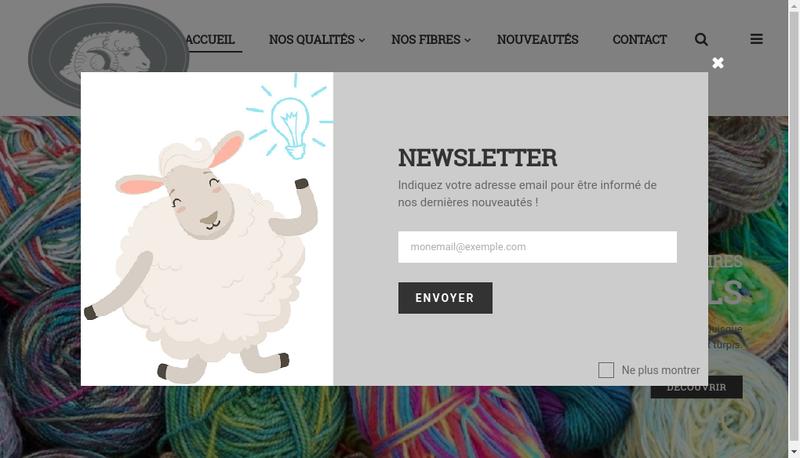 Capture d'écran du site de Textiles de la Marque