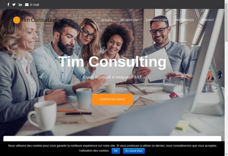 Capture d'écran du site de TIM Consulting