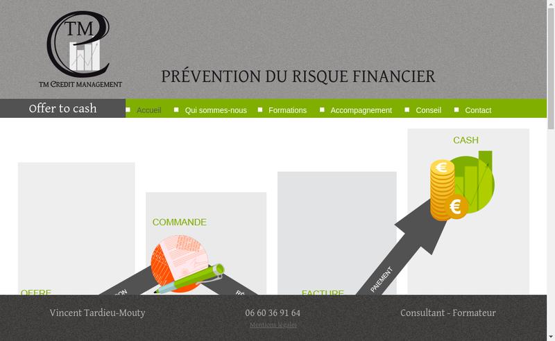 Capture d'écran du site de Tm Credit Management